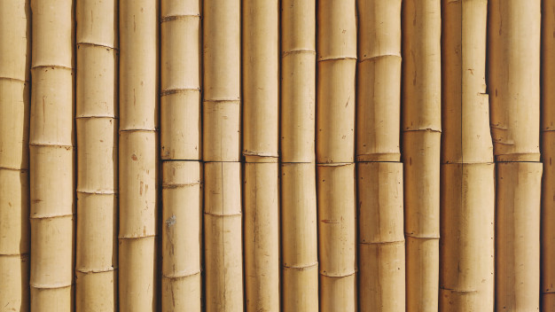 Bamboo trend: A New trends for decor and development